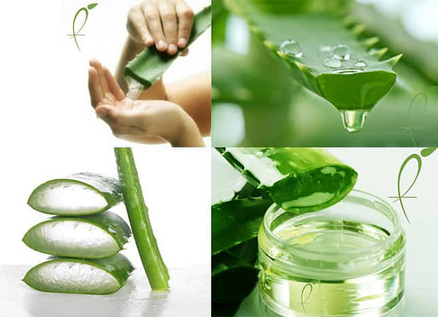 Benefits of Aloe Vera And How To Use It Properly